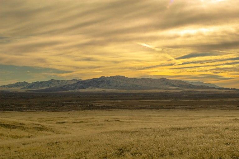 North Nevada 2014 3