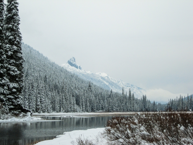 Winter at Tucquala Lake Nov 2017-4