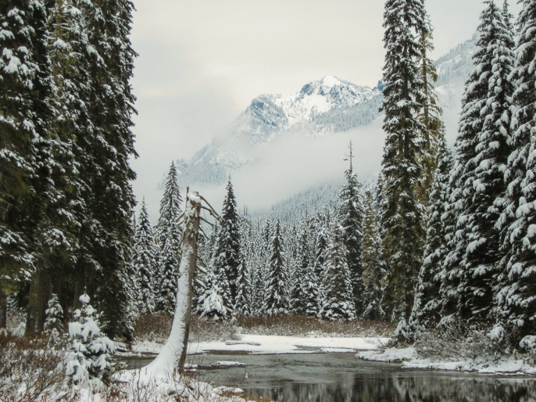 Winter at Tucquala Lake Nov 2017-5